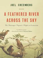 A Featherd River Across the Sky by Joel Greenburg